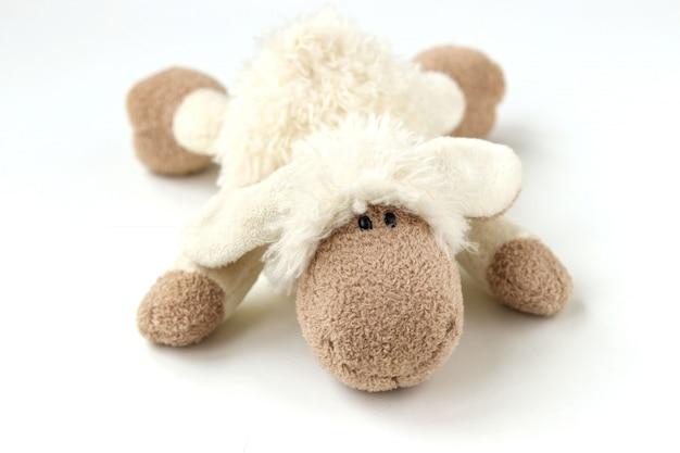 Мягкая игрушка овечка изолированная Premium Фотографии