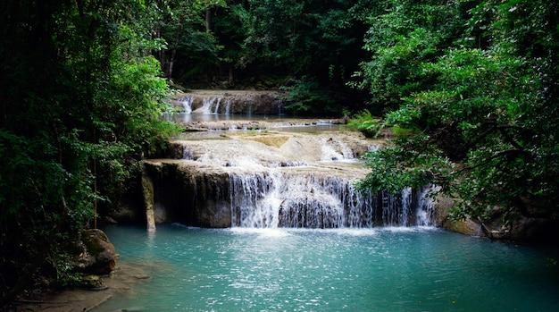 森の中の風景の滝 無料写真
