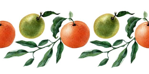 果物、小枝、みかんのスライスの水彩のシームレスな境界線 Premium写真