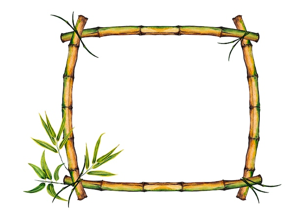 カラフルな現実的な竹の茎と葉を持つフレーム。水彩イラスト。 Premium写真