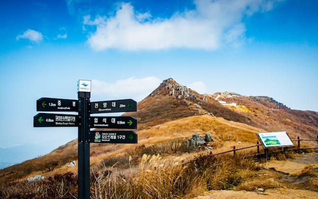 Красивый осенний сезон, национальный парк мудеунгсан, южная корея. Premium Фотографии