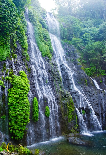 バリ島の山の斜面のバニュマラツイン滝。ロックとターコイズブルーの池のある熱帯雨林のジャングルの滝カスケード。 Premium写真