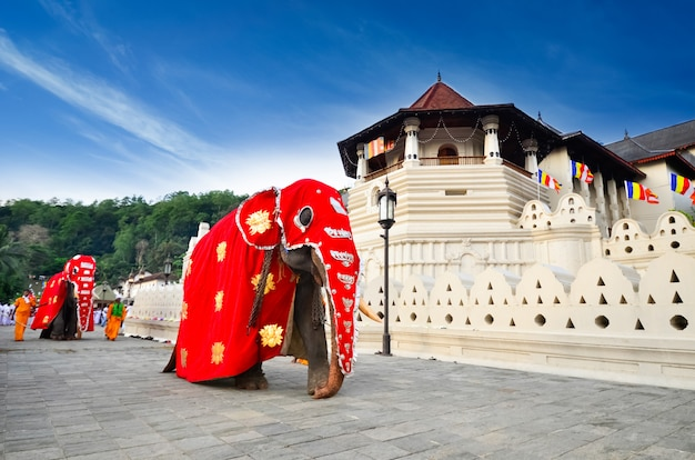 神聖な歯の遺物の寺院、キャンディ、スリランカ Premium写真