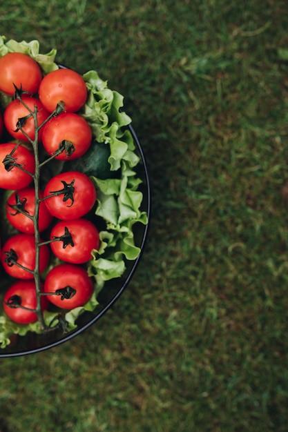 緑の夏の草の上面にバケツで新鮮なジューシーなトマトレタスキュウリ Premium写真