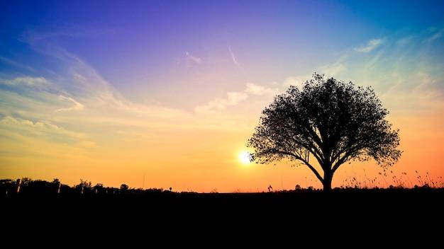 На открытом воздухе небо красивая духовная фантастика Бесплатные Фотографии