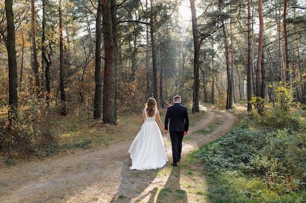 妖精の森でロマンチックな写真。きれいな女性 無料写真