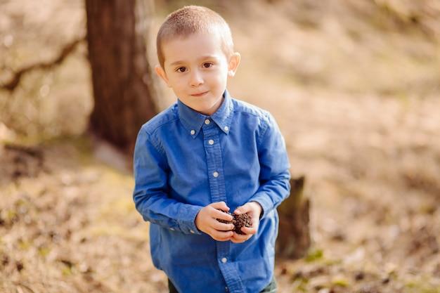 Портрет милый прелестный маленький мальчик держит кучу сосновых шишек Бесплатные Фотографии