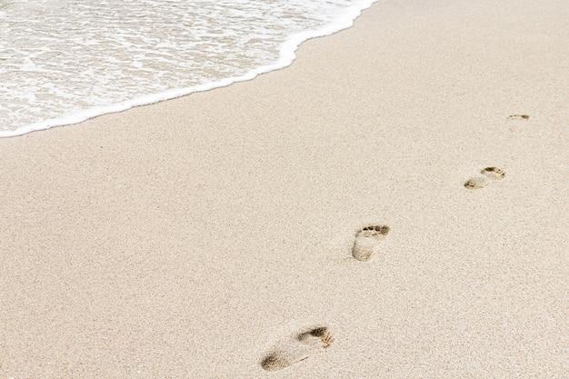 曇りの日に足跡とビーチショア Premium写真