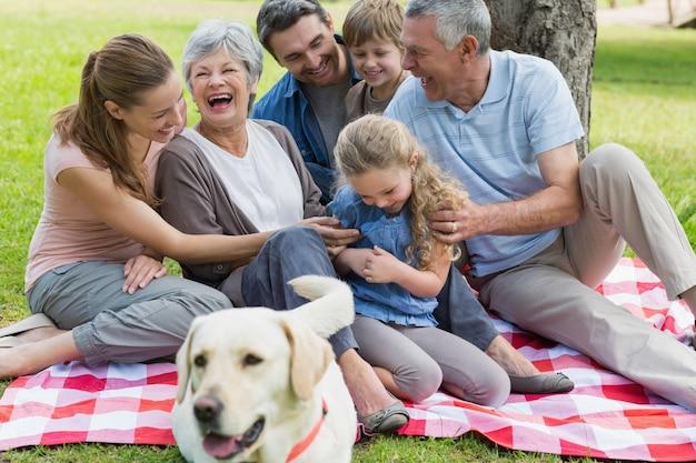 公園でピクニックブランケットに座っている陽気な拡張家族 Premium写真