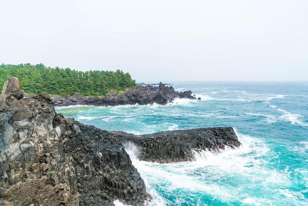 済州島中文大歩海岸ジュサンジョリ崖 Premium写真
