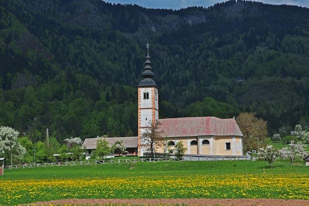 スロベニアのアルプスのスタラフジナ Premium写真