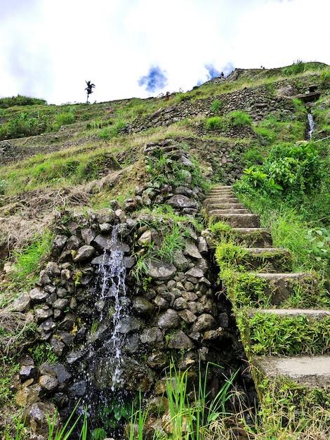 Рисовые террасы в банауэ, филиппины Premium Фотографии