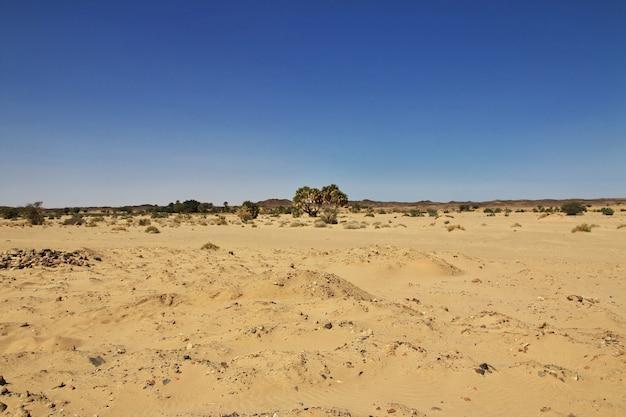 サハラ砂漠、スーダン、アフリカのガザリの古代修道院の遺跡 Premium写真