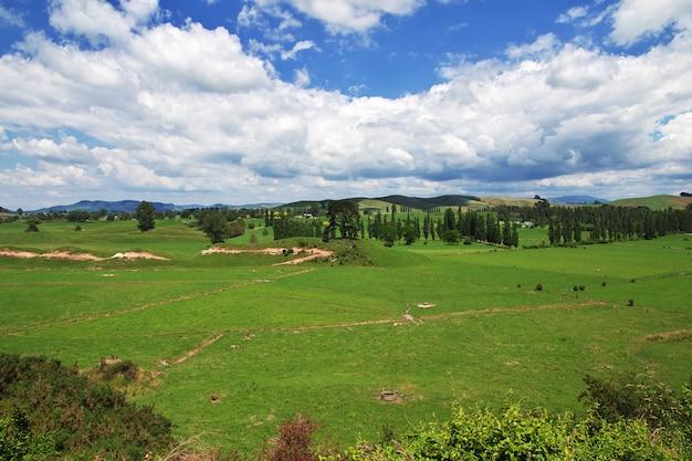 ニュージーランドの丘と畑 Premium写真