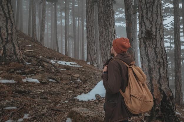 人は劇的な日の出のシーンで霧の霧の森の道に入る Premium写真