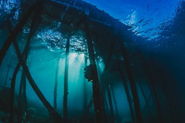 海中の潜水艦
