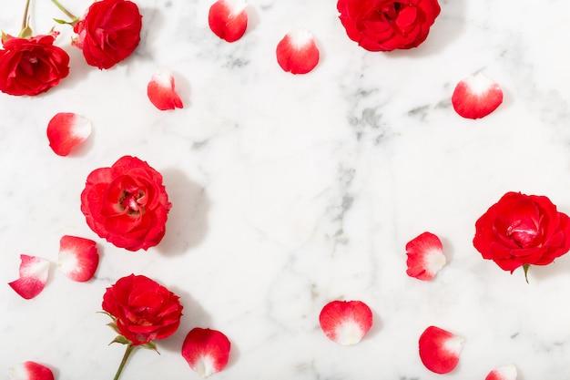 Красная роза и лепестки на мраморной предпосылке. валентина или свадебный фон. Premium Фотографии
