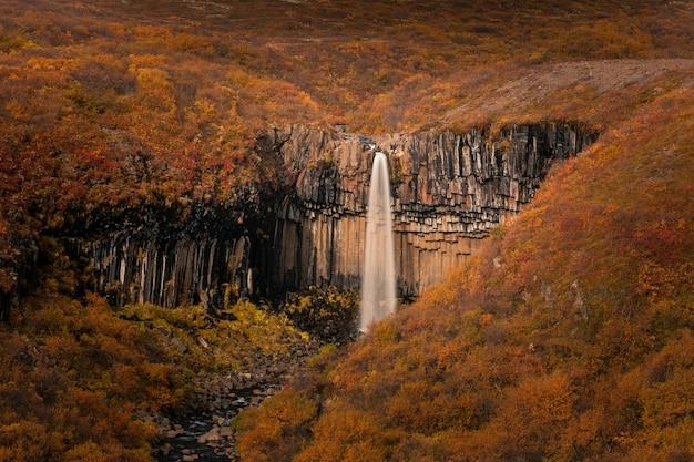 南アイスランドのスカフタフェットル国立公園のスヴァルティフォスの滝。 Premium写真
