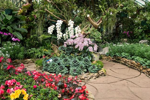 キャベツの装飾と蘭の花 Premium写真