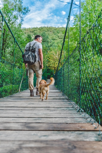 木製の吊り橋の上を歩く犬とハイカー Premium写真