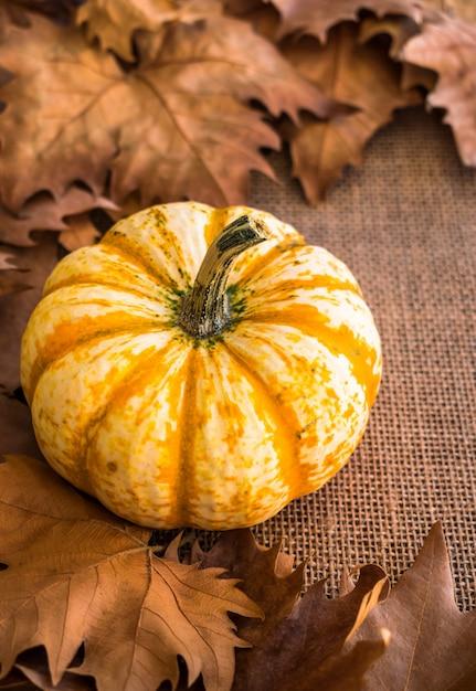 秋の乾燥した葉を持つカボチャ Premium写真