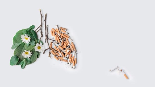 Последняя сигарета. брось курить тему. легкие здорового человека и больного. день без курения Premium Фотографии