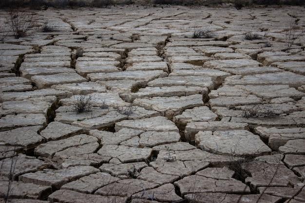 Трещины поверхности пруда во время засухи Premium Фотографии