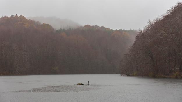 雨が降る日のサンタフェの沼 Premium写真