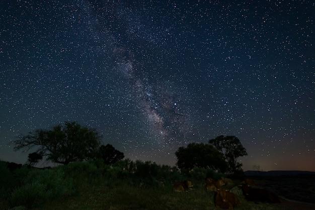バルエコスの自然地区での夜の写真。エストレマドゥーラ。スペイン。 Premium写真