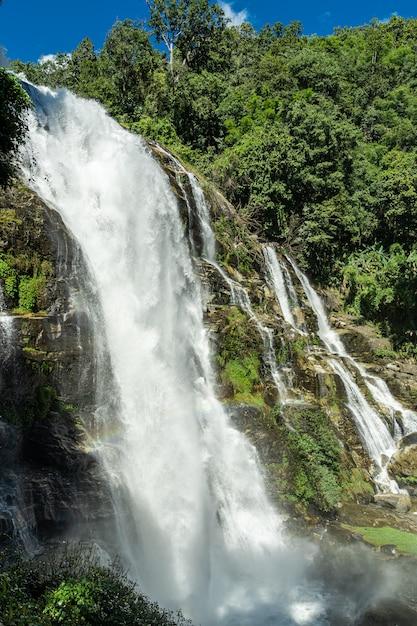 ジャングルの真ん中にある岩の滝 Premium写真