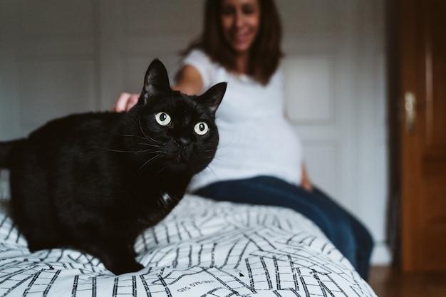 黒い猫と自宅で若い妊婦 Premium写真