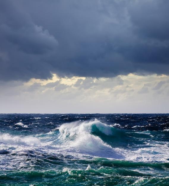高い海の波 無料写真