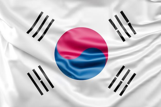 韓国の国旗 無料写真
