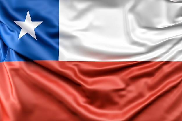 チリの国旗 無料写真