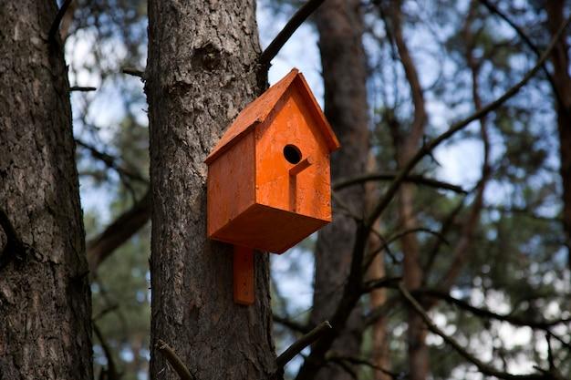 木のオレンジの巣箱 Premium写真