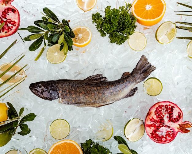 フルーツスライスに囲まれた氷の上に置かれた生の魚のトップビュー 無料写真