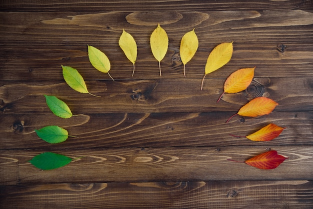 木製の背景に緑から赤に半円で配置された紅葉が通過します。季節を変えるというコンセプト。 Premium写真