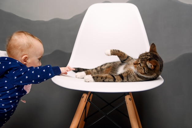 小さな子供が白い椅子に横になっているふわふわ猫と遊んでいます。 Premium写真