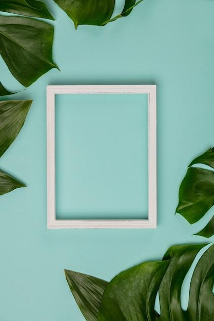 Креативная квартира с тропическим растением и белой рамкой Premium Фотографии