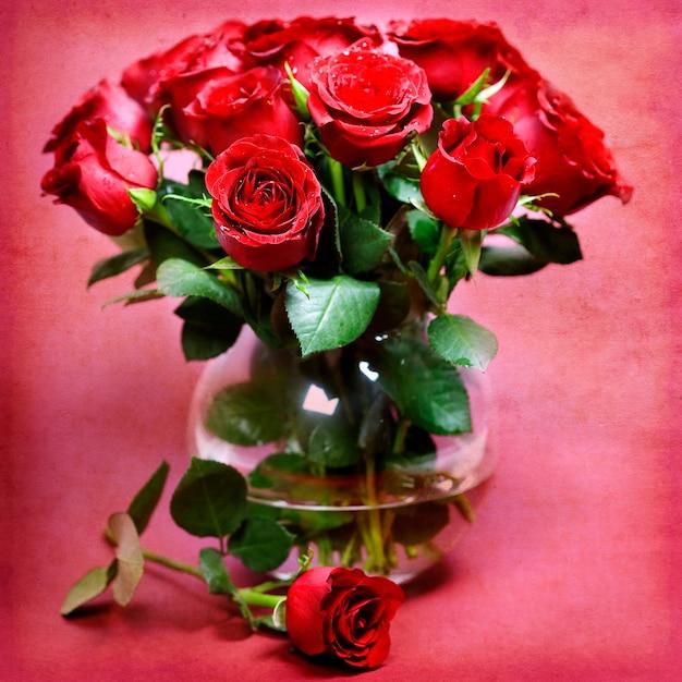Красные розы Premium Фотографии
