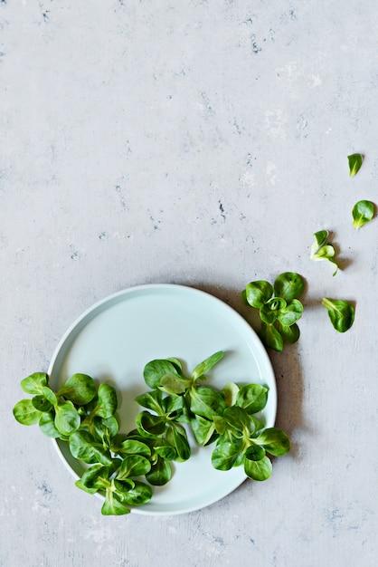 Свежий сочный салат из зеленой кукурузы (салат из баранины, валерианелла) на тарелку на синей стене. концепция здорового питания. вегетарианство, крупный план. выборочный фокус. копировать пространство стань веганом. Premium Фотографии