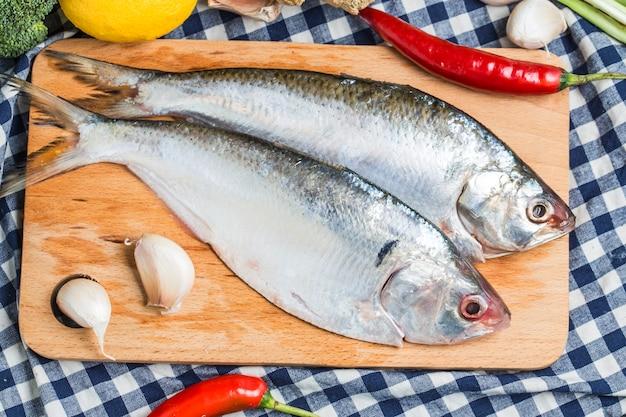 東南アジアのアイリッシュ魚 無料写真