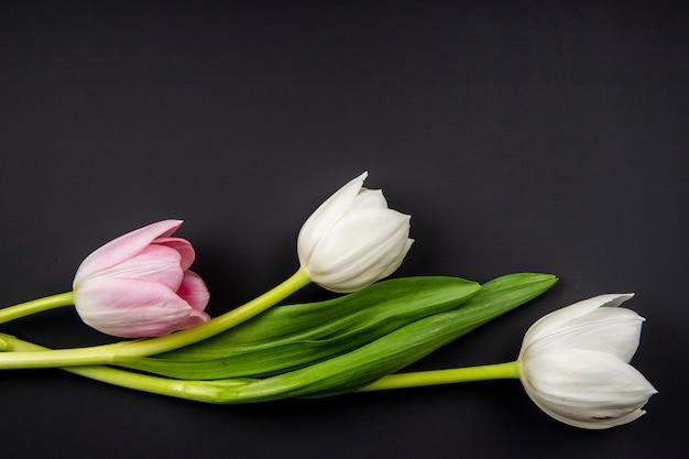 コピースペースを持つ黒いテーブルに分離された白とピンクの色のチューリップのトップビュー 無料写真