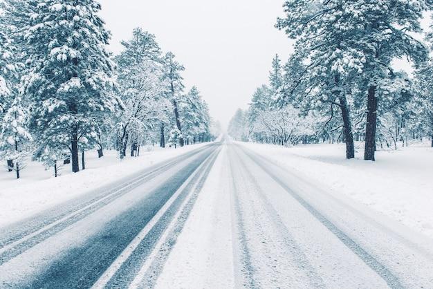 氷で覆われた冬の道 無料写真