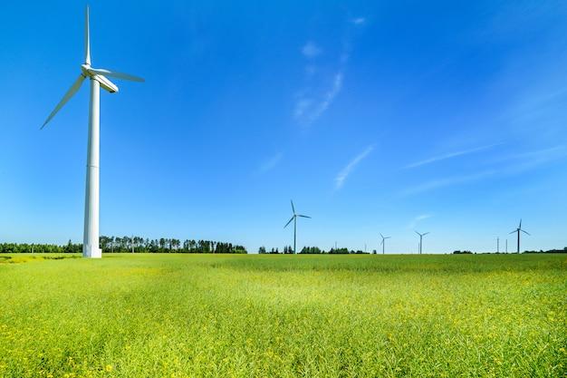 牧草地の風力発電機 Premium写真