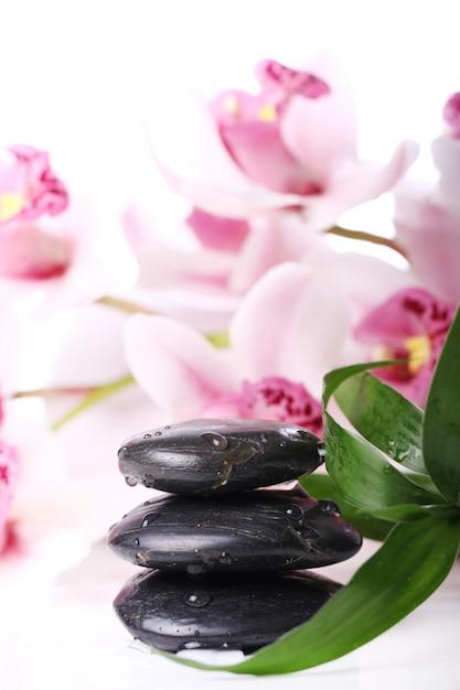 スパの石と美しい蘭 無料写真