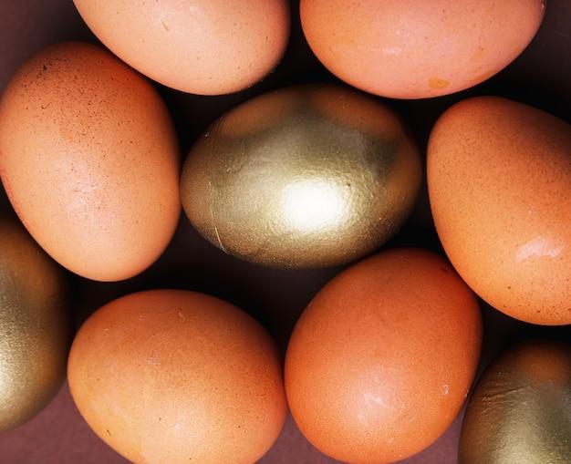 黄金の卵 無料写真