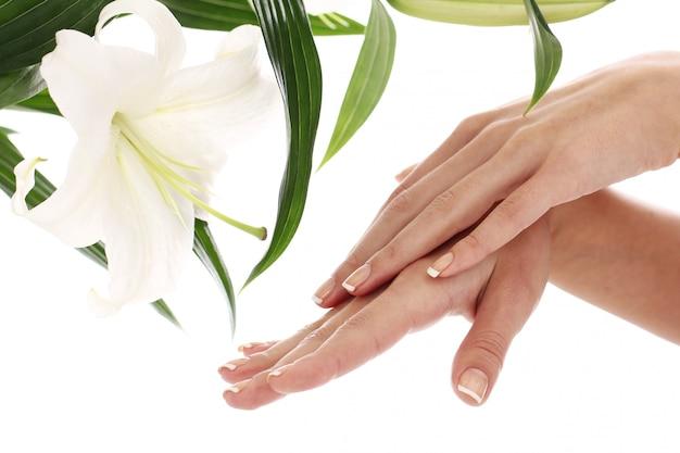 女性の手とリリーの花 無料写真