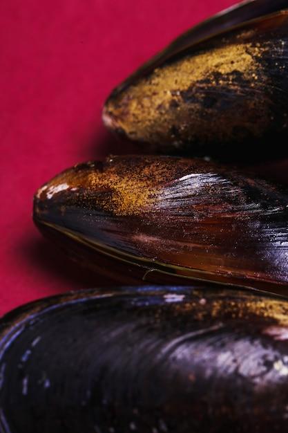 おいしいムール貝をクローズアップ 無料写真