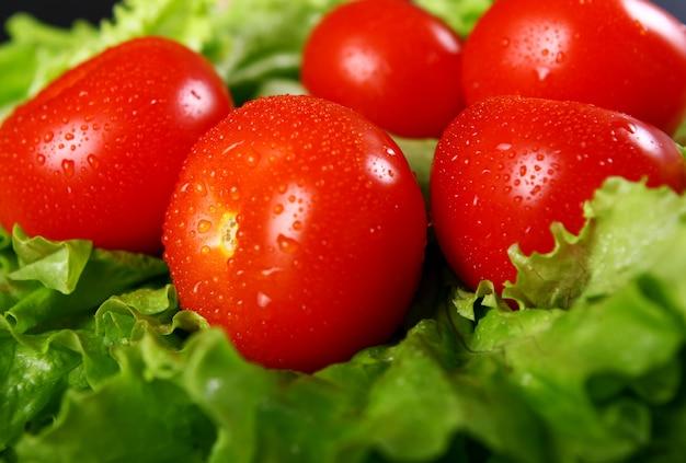 新鮮で濡れたトマト 無料写真